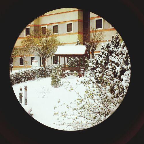 Snowsnowsnow.