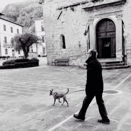 Goodmorning :) in BagnodiRomagna Sofiavicchi Sofiavicchiconceptdesign Bnw Bnw_life Bnw_collection EyeEm Bnw Bnw_captures Dogs Downtown Hanging Out Streetphotography Streetphoto_bw Streetphotography_bw