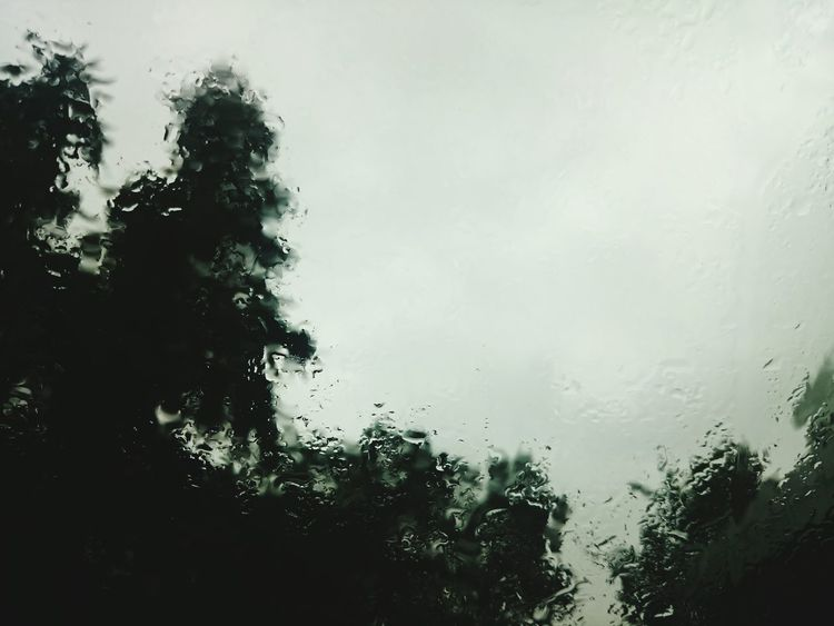 Rainy Day Authentic Moments Autumn Gray Sky Lazy Day Raindrops Wet Window Wet Wet Wet Green Green Green!  Lookingup