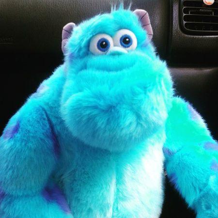 Gatito 😻😻 Monstersinc Sulley