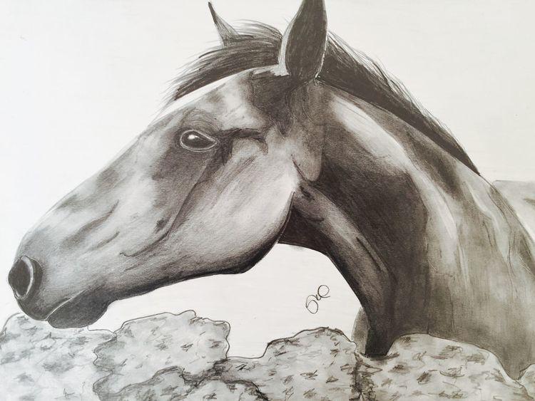 Nature Horse MyArt Drawing Art #illustration #drawing #draw #tagsforlikes #picture #photography #artist #sketch #sketchbook #paper #pen #pencil #artsy #in Myartwork Animal_collection Art ArtWork Artist