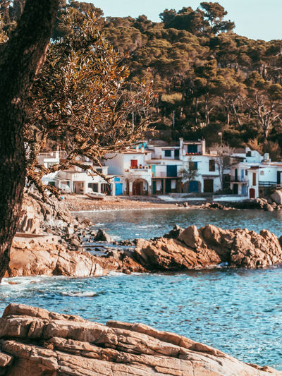 Houses by sea