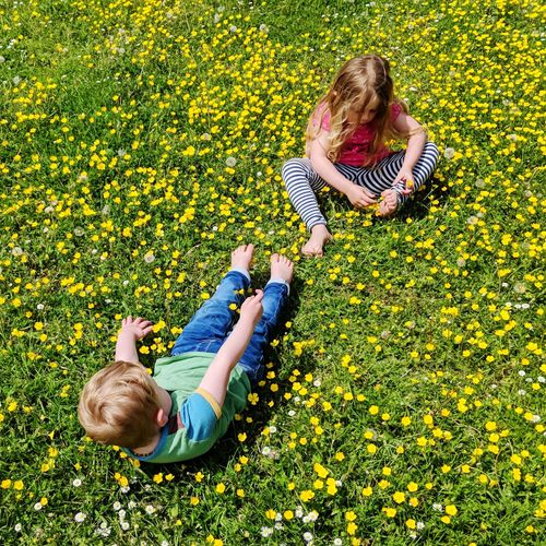 Low angle view of girl and yellow flowering plants in field