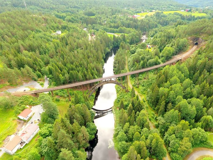 Railroadbridge Norway🇳🇴 Djiphantom4k Gjerstad Tree Rural Scene Agriculture Growth High Angle View Aerial View Lush Foliage Nature Landscape Green Color Beauty In Nature No People Rice Paddy Outdoors Architecture Water Day