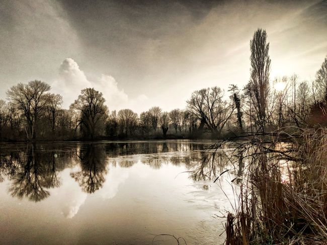 Berlin Berlinsky Skyoverberlin View Reflections Water Reflections Pixel2 Googelpixel2 Outside Photography Naturephotography Landscape Beauty In Nature Sky Bluesky Watertreesky Pixelphotography HDR Hdrphotography Reflection Tree Lake Water Cloud - Sky Nature Outdoors No People