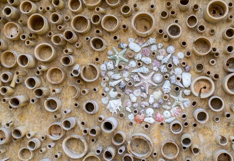 🏖️ Marine Layer Sveti Vlas Decoration Sea Stars Shells🐚 Marine Photography Background Wood - Material Bamboo - Material Backgrounds Pattern Circle Close-up Wooden Raft Wooden Circular