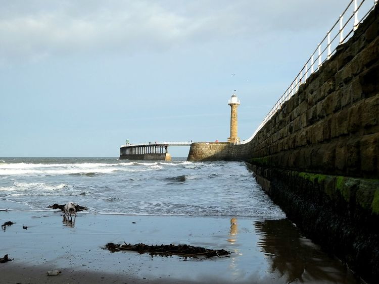 The coastline at Whitby, North Yorkshire. Loved by dogs, loved by me, loved by many...💙 Sea Waves Rolling In Nature Coastal Feature Lighthouse Ancient Jetty Harbour Wall People In The Distance Wet Sand Reflection Sunlight And Shadow Dog Seaweed Environment Horizon Over Water Beauty In Nature Whitby Water Outdoors Day Beautiful UK Coastline