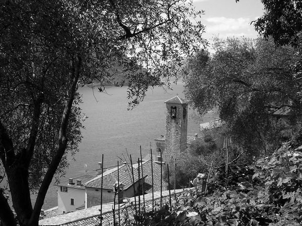 Architecture Day House Lake No People Outdoors Tree Water Switzerland Lago Tranquility Tranquil Scene Scenics Lago Di Lugano  Blackandwhite Black And White Black & White Black&white Trees Church Clock Tower Old Town Lake View Monochrome