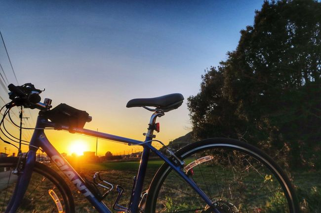 Bicycle Mode Of Transport Transportation Land Vehicle Sky Outdoors Nature Tree No People Beauty In Nature Day The Sunset 夕日と自転車