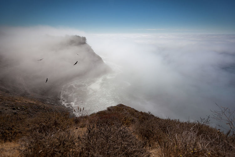 Pacific coast from Highway 1. Ocean covered in haze. California California Coast Highway 1 Pacific Pazifik Beauty In Nature Birds Birds In Flight Clous Coast Day Fog Highway Nature No People Ocean Outdoors Pacific Coast Scenics Sky Tranquil Scene Tranquility California Dreamin