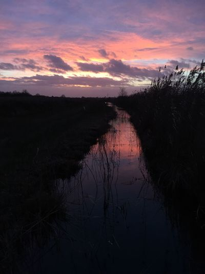 Sunset No People Beauty In Nature Water Nature Outdoors River Fenland The Fens Nature Reserve Sedge