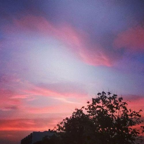 regram @abhisheksayz An awesome eve 😍 Capturedbymybrother Sky Clouds Tree Shadow Sunset Pink Picoftheday Instalike Instaclick Likeforlike