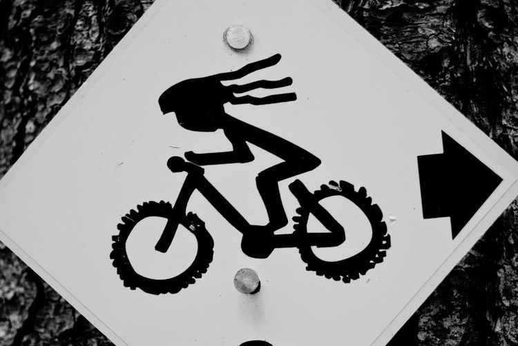 Rebel Rider Cycling Trail Riding Single Track Rebel Wrong Way. Dreadlocks Black And White Bycicle Ride Fast Peddle Trail Trail Marker Road Sign Communication Warning Sign Close-up Bicycle Lane Directional Sign Arrow Sign One Way Arrow Sign Forbidden Arrow Symbol