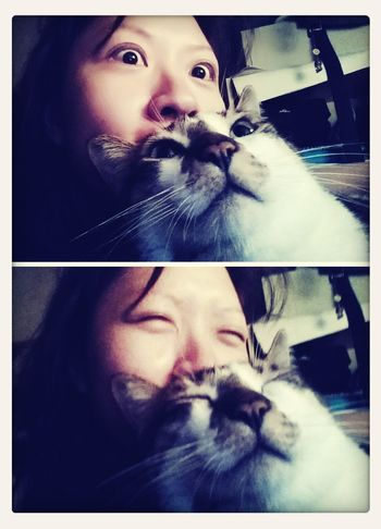 Cat Naf Same Face Shock nam nam and me in same face ???
