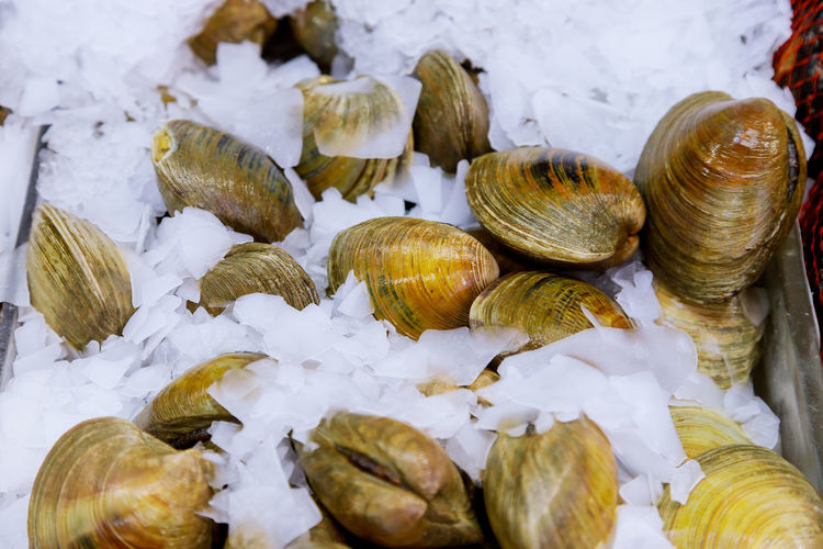 Close-Up Of Mussels On Ice At Fish Market