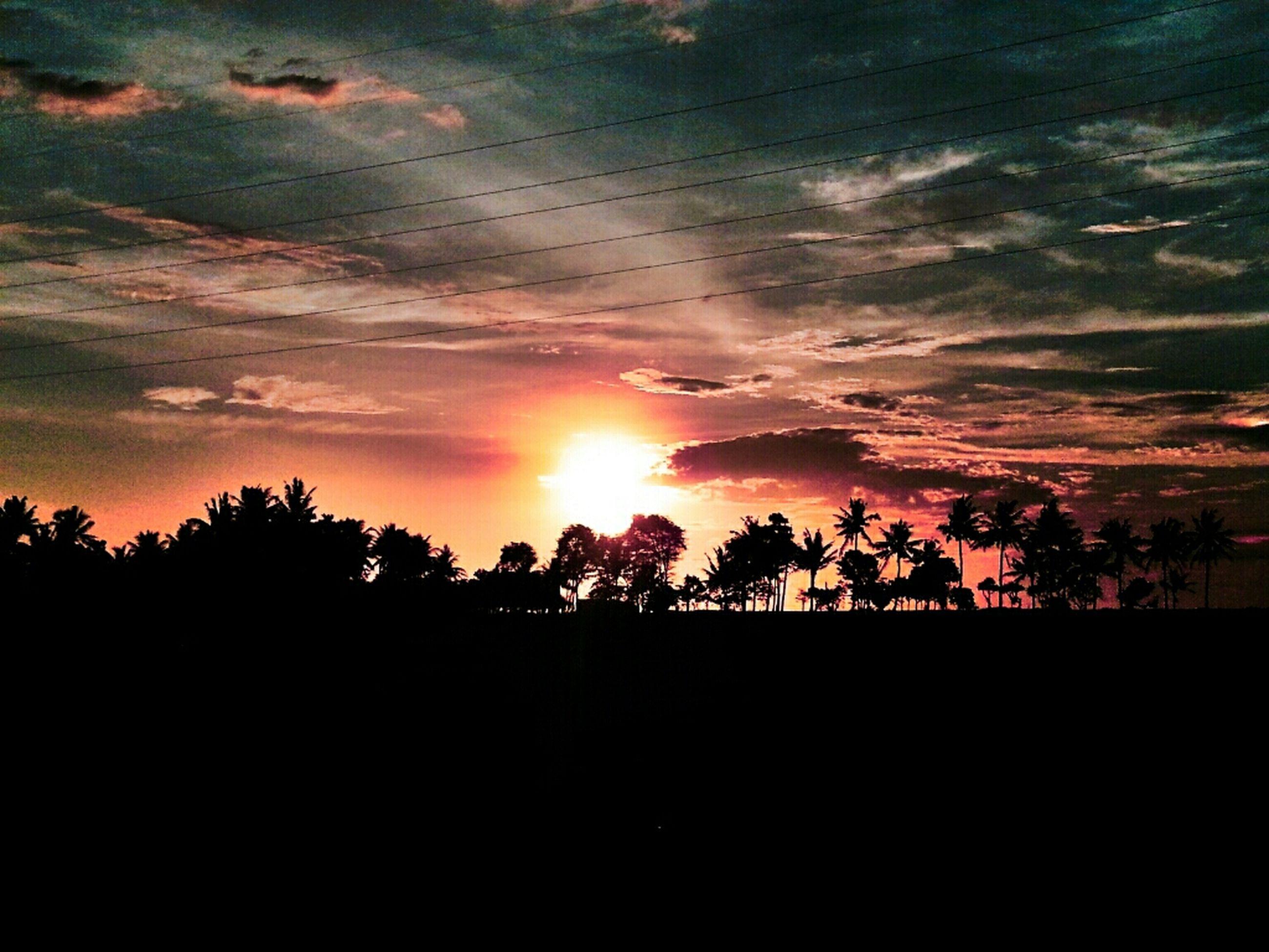 sunset, sun, silhouette, tree, tranquil scene, scenics, tranquility, beauty in nature, sky, sunlight, orange color, nature, idyllic, sunbeam, landscape, cloud - sky, lens flare, back lit, growth, no people