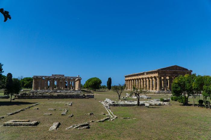 Paestum Roman ruins, Italy Temples Roman Ruins Temple Of Ceres Temple Of Neptune Architecture Built Structure History Sky The Past Clear Sky Building Exterior Nature Day Travel Copy Space Tourism Travel Destinations Blue Ancient No People City Ancient Civilization Plant Old Ruin