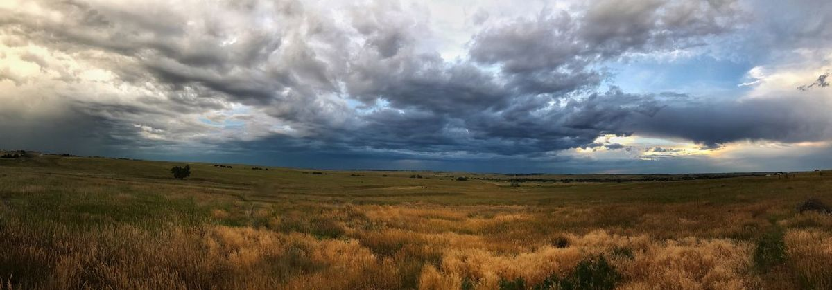 Storm clouds over the plains Field Landscape Nature Cloud - Sky Sky Grass Tranquil Scene Beauty In Nature Tranquility Scenics Horizon Over Land No People Outdoors Rural Scene Day Growth Sunset Storm Storm Cloud Panoramic Photography Landscape_photography Kiowa, CO