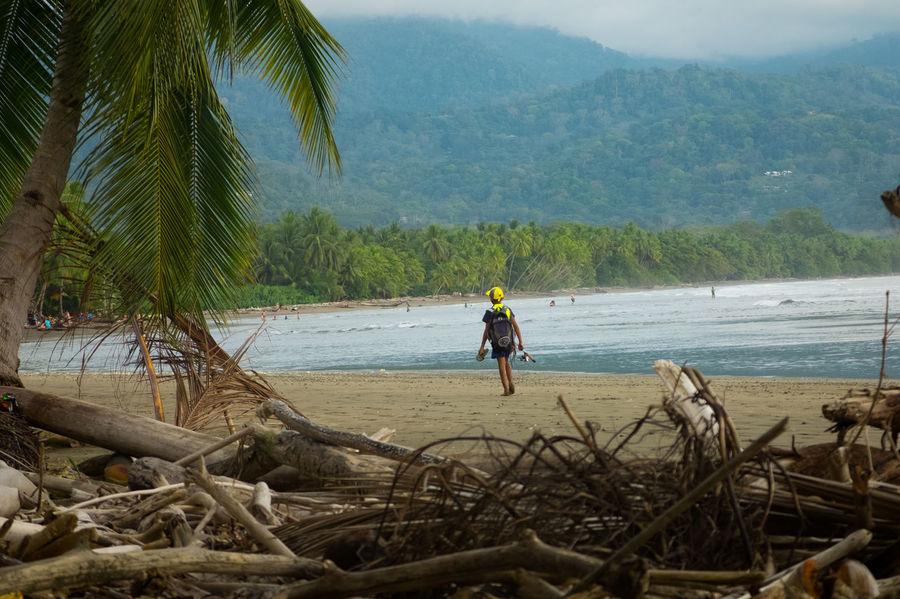 Costa Rica Nature Pacific Beach Beauty In Nature Fishermen Jungle Ocean Wildlife