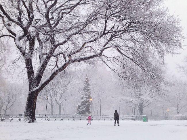 Morning walk. Open Edit Snow The Great Outdoors - 2015 EyeEm Awards