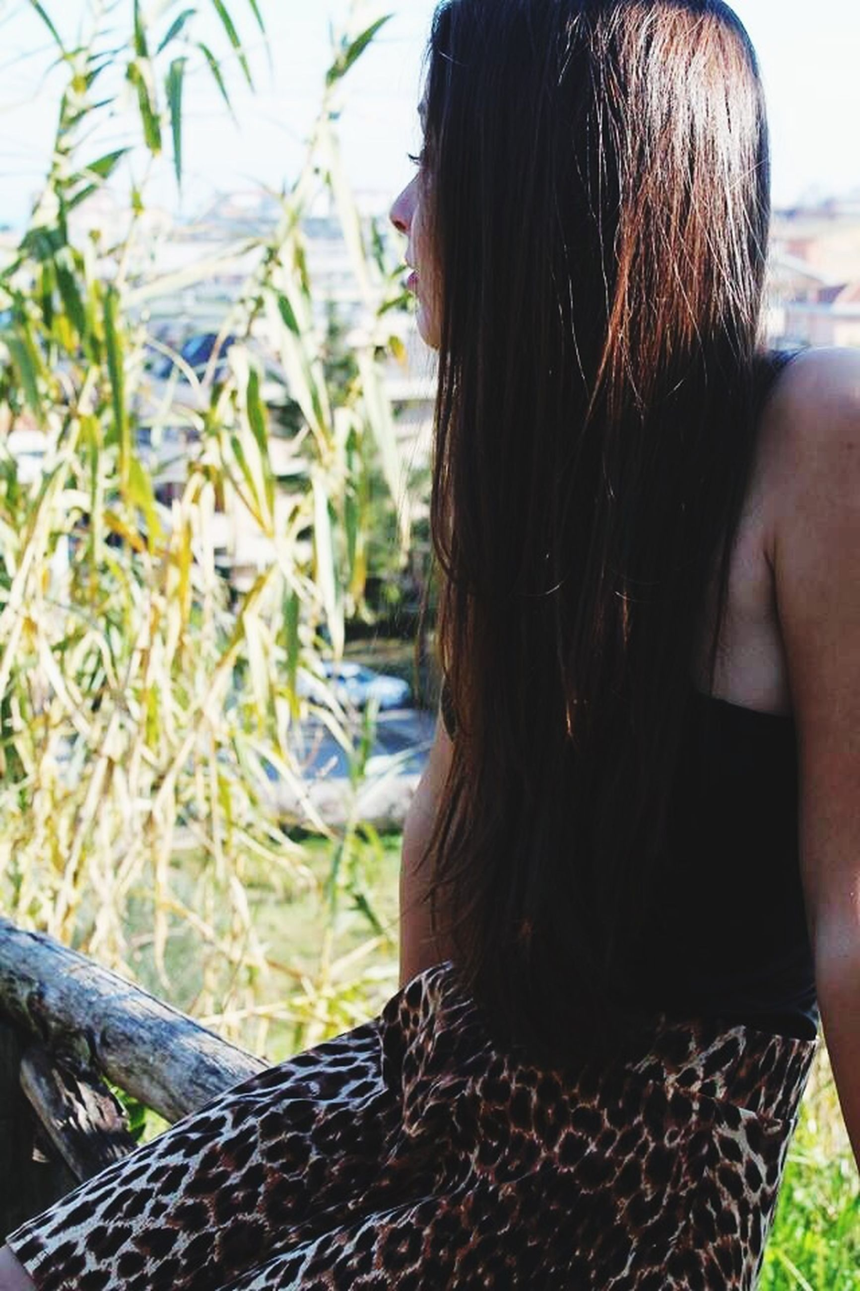 lifestyles, long hair, leisure activity, young women, young adult, person, headshot, brown hair, focus on foreground, rear view, casual clothing, day, side view, outdoors, nature, close-up