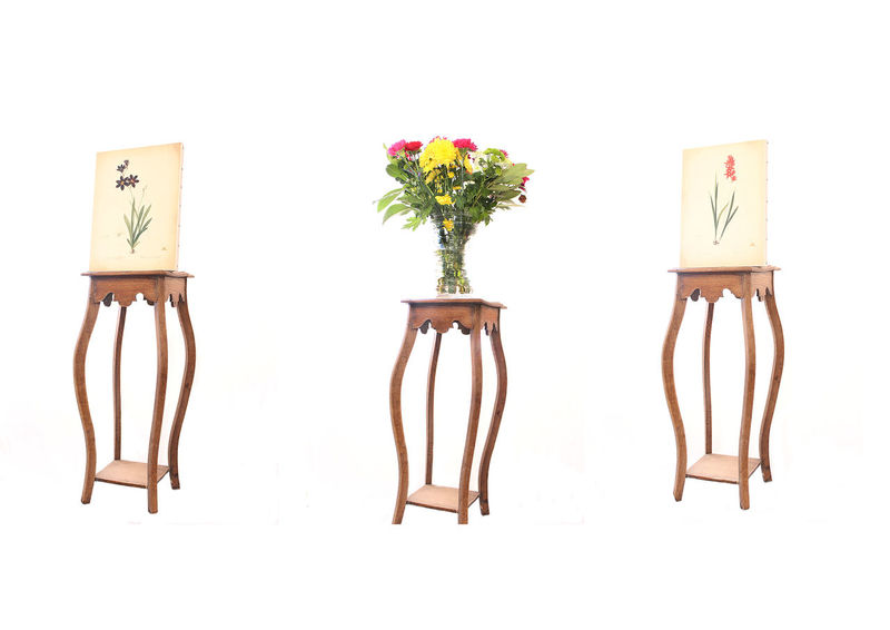 Arrangement Canvas Decoration Flowers Growth Imagination Interior Design No People Pink Color Potted Plant Still Life Studio Shot Triptych White Background First Eyeem Photo