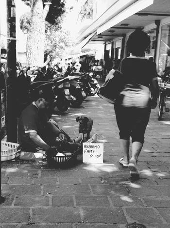 The Street Photographer - 2016 EyeEm Awards Dog's appeal 🐶 Sofiavicchi Sofiavicchiconceptdesign Bnw Streetphotography Streetphoto_bw Dog Dogs City Beggar Misery Folks Downtown Walking Around