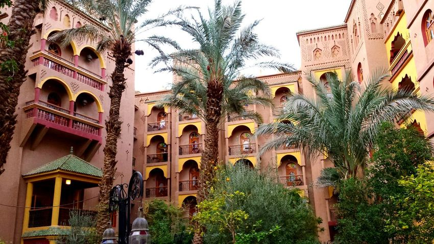 Morocco At The Hotel Inner Yard Coconut Trees Typical Architecture Palm Trees Palms Palmhotel Hotel Hotel Garden Beautiful Colors Warm Colours Bogenfenster Palace Hotel Wonderful Architecture 1001 Night Märchenhaft Beliebte Fotos