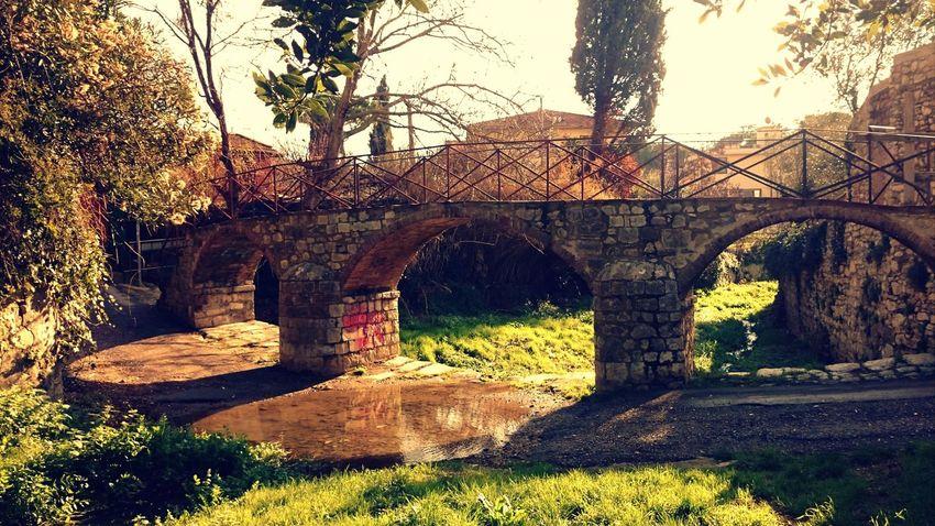 Where I used to play as a kid Photographic Memory Bridge Stream Sunny Afternoon Sesto_fiorentino Sestofiorentino Childhood Smartphonephotography