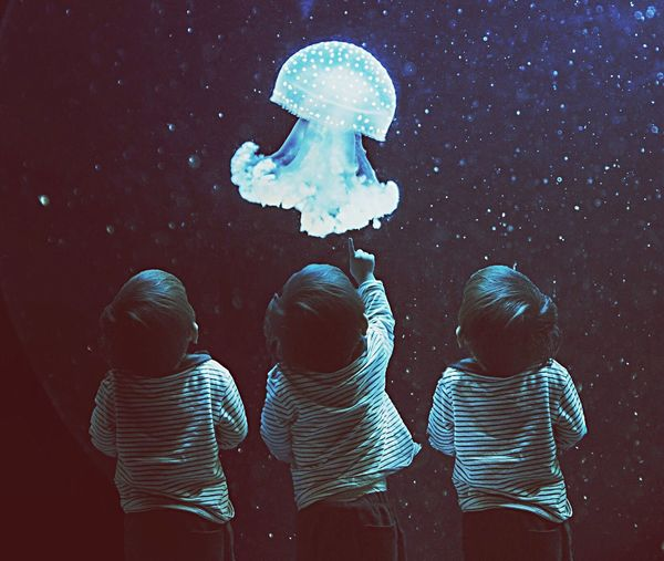 Multiple image of boy looking at jellyfish in aquarium