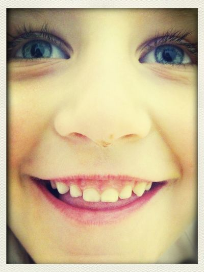 Olly with choc on her nose