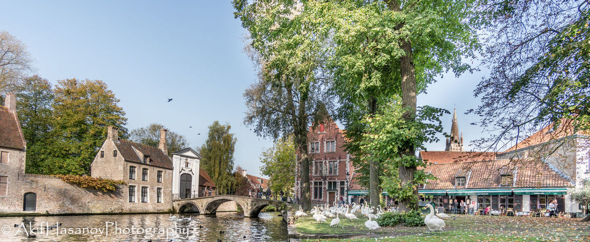 Bruges, Belgium Architecture Building Exterior Built Structure Day Tree Water