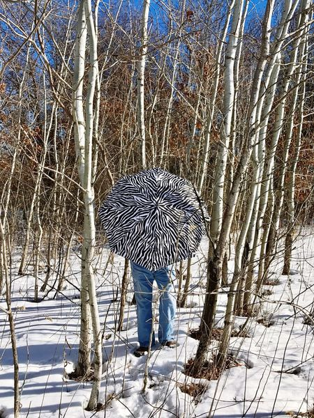Winter Cold Temperature One Person Snow Bare Tree Real People Tree Nature Outdoors Beauty In Nature Full Length Day People Umbrella Minnesotaphotographer