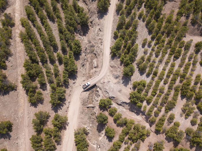 Aerial view of vehicle moving on road amidst trees