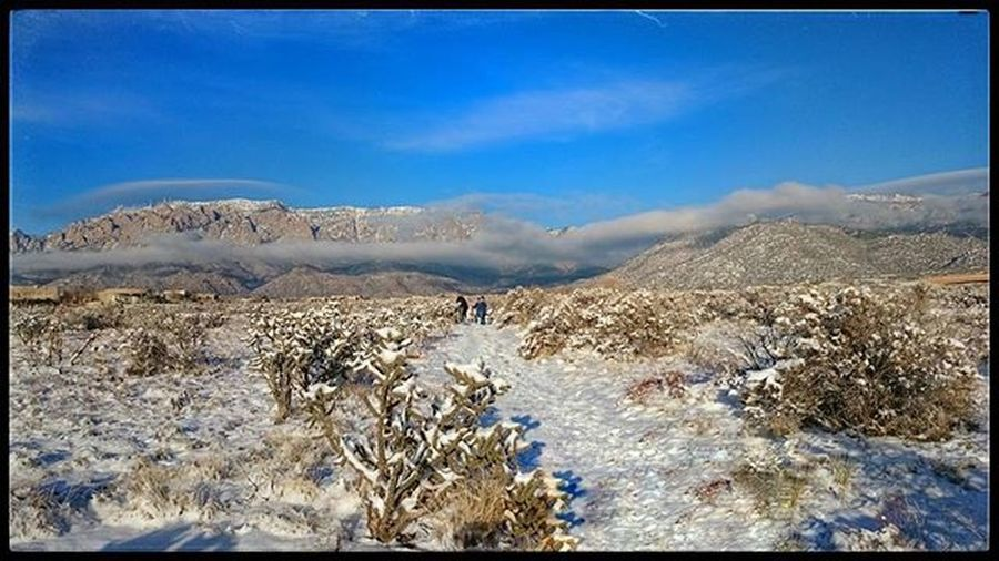 📷 from Katie and I's short hike today. New Mexico is gorgeous with snow, can't wait to check it out in the summertime! Natureboyphotos Newmexico Instagood Nature Snow