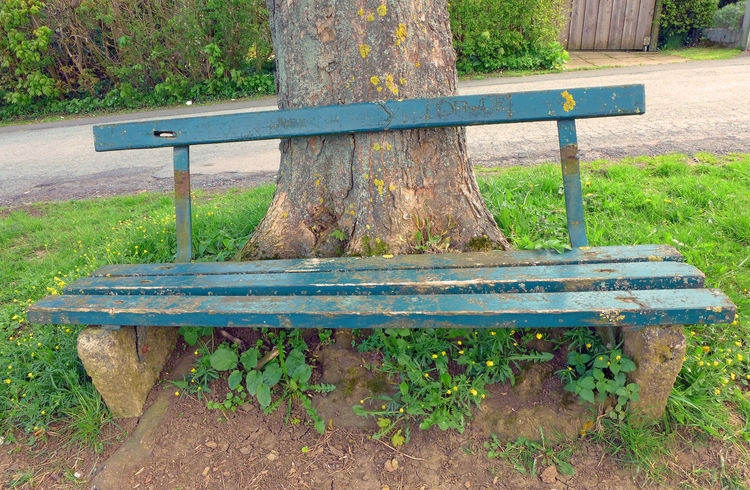 Absence Bench Bench Empty Grass Green Color Park - Man Made Space Park Bench Parkbank Seat Tree Wood - Material Wooden