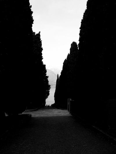 Piona Abbey Abbey At Bottom Peace Cypresses Italy Lake Lombardy Countryside Piona Tranquility Scene