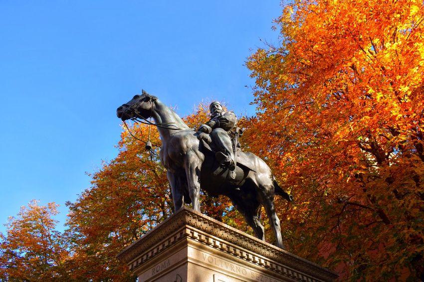 26.11.16 •Garibaldi's monument 🇮🇹• NikonD5300_18-55mm_1/125_F8_ISO100 _________________________________________ Quando ho scattato questa foto era domenica mattina. Mi trovavo in centro a Bologna, e seduto in una panchina sotto la statua di Garibaldi, accendevo per la prima volta, la mia prima reflex. Erano mesi che la desideravo, stringerla finalmente tra le mani é stata un emozione indescrivibile. Alzatomi dalla panchina non ho nemmeno dovuto guardarmi intorno, quegli autunnali alberi, così gialli, in contrasto a quel limpido cielo, così azzurro, hanno subito attirato la mia attenzione. Senza nemmeno accorgermene stavo già puntando la mia Nikon, ho regolato l'esposizione, ed ho scattato questa, la mia prima foto in manuale. _________________________________________ Eyeemitalia EyeEmEmiliaromagna Eyeembologna Bologna Italia Bologna Centro Autumn November Statue Monument Sculpture Garibaldi GaribaldiStatue Tree Adapted To The City Blue Orange Sky Clear Sky Outdoors EyeEmNewHere Nikon Nikonphotography Nikond5300 First Eyeem Photo Adapted To The City