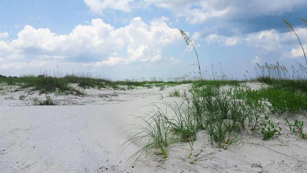 Orlando Orlando Florida Beach Florida Beaches Floridabeach Floridabeaches Sand Sky