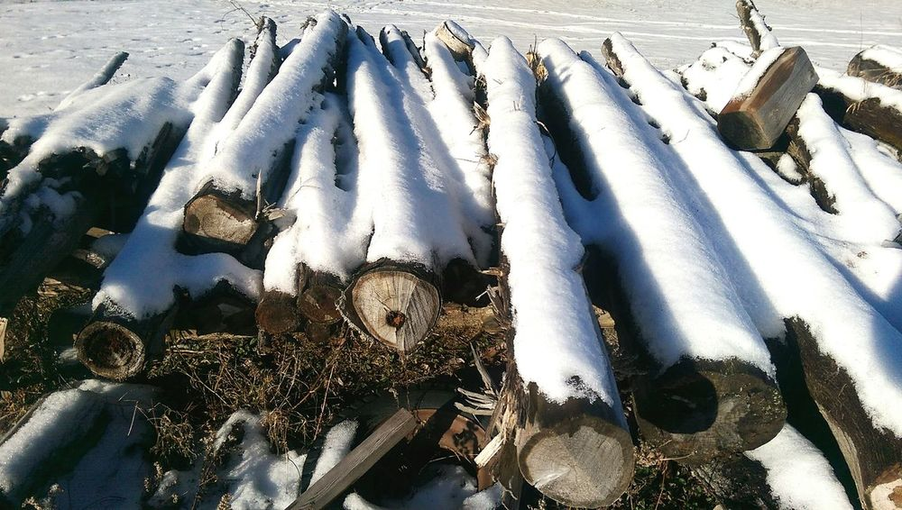 Pile Of Logs First Snowfall 2017 Outdoors Nature Close-up No People Sky Day