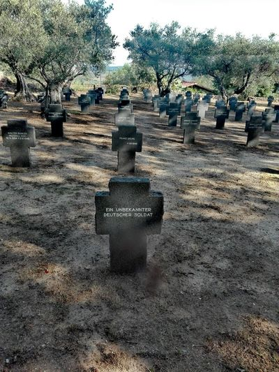 vestigios de la barbarie. primera y segunda guerra mundial History Historia Mundial World History Cementery Cementerio Cruz Cruces Germany🇩🇪 SPAIN Extremadura Yuste Soldados Alemanes World War 2 World War 1 Germany Photos Soldier Tumba Tree Sky