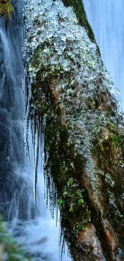waterfalls and ice ! Taking Photos Popular EyeEm Taking Pictures Eyeemphotography EyeEm Gallery Nikond3300 Eyeem Photography Close-up EyeEm Nature Lover Beauty In Nature Waterfall Water Ice Icecold Icicles Icicleporn Beauty Tree Winter Wintertime The Great Outdoors With AdobeEyeem Icicles It's Cold Outside Showcase: January
