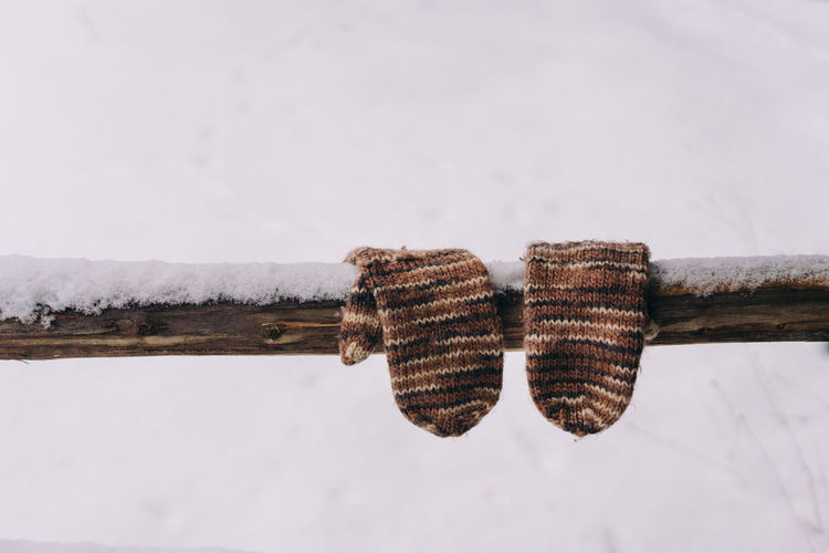 Gloves hanging on a wooden fence