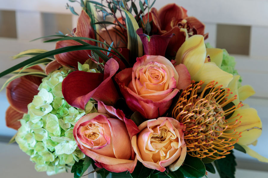 Bouquet of flowers including roses, orchids, pincushion proteas and hydrangea flowers in bright colors including orange, green, yellow and pink. Green Hydrangea Nature Orchid Red Background Beauty In Nature Bouquet Close-up Day Decoration Flower Flower Head Fragility Freshness Hydrangeas Nature No People Petal Pincushion Proteas Pink Color Rose - Flower Yellow