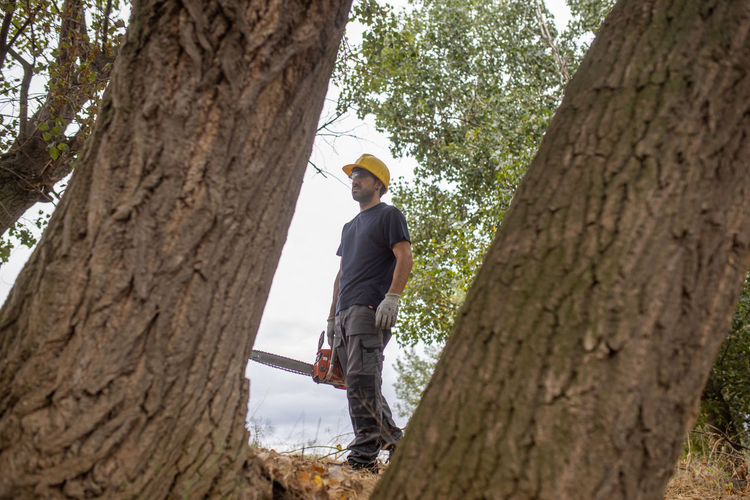 Low angle view of man holding chainsaw standing by tree trunk