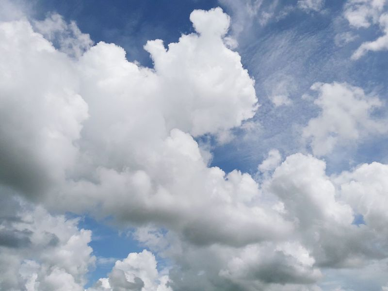 เมฆเยอะจัด Cloud - Sky Nature Cloudscape Sunny Sky Blue Day Weather Cloud Computing Spirituality Outdoors Wind Tranquility No People Sun Flying Beauty In Nature Plane Beauty