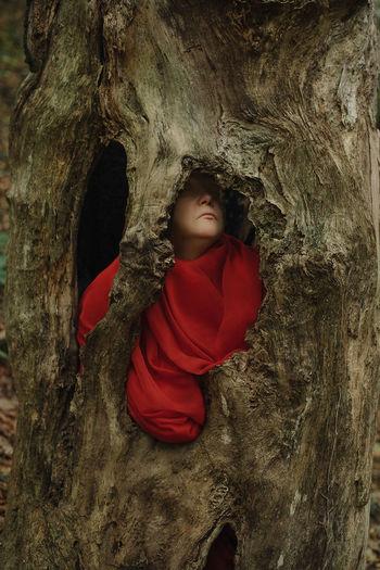 Boy in front of tree trunk rock