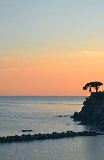 Sea Horizon Over Water Sunset Beach Scenics Travel Destinations Outdoors Nature Water Tranquility Beauty In Nature No People Sky Refraction Day Sea And Sky Sestri Levante Nautical Vessel Beauty In Nature No People, Liguria Baia Del Silenzio Liguria,Italy Tranquil Scene EyeEm Gallery
