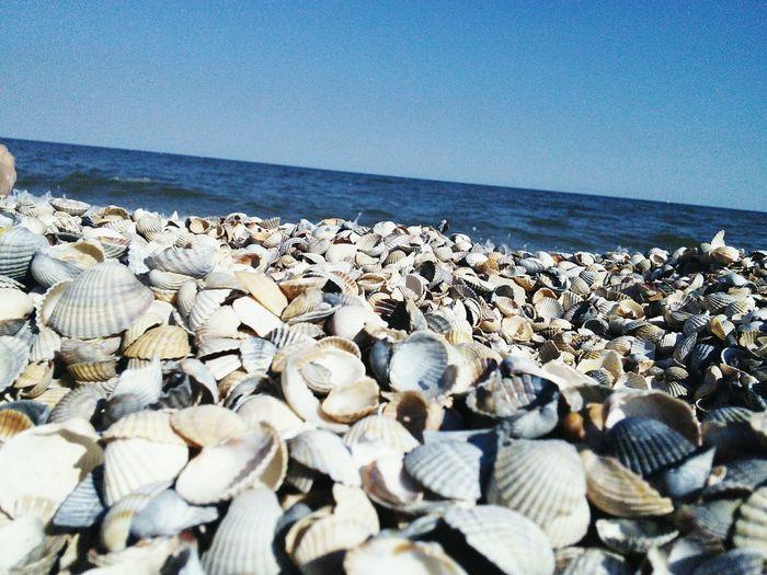 Sea First Eyeem Photo