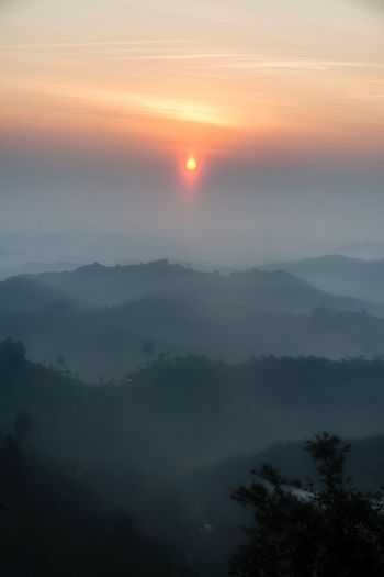 Good morning in the wild Scenics - Nature Beauty In Nature Sky Tranquil Scene Tree Tranquility Mountain Sunset Plant Idyllic Fog Nature Sun Landscape Non-urban Scene Mountain Range Environment No People Orange Color Outdoors My Best Travel Photo